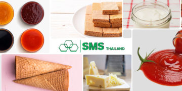 Modified Starches - Application in Food Industry